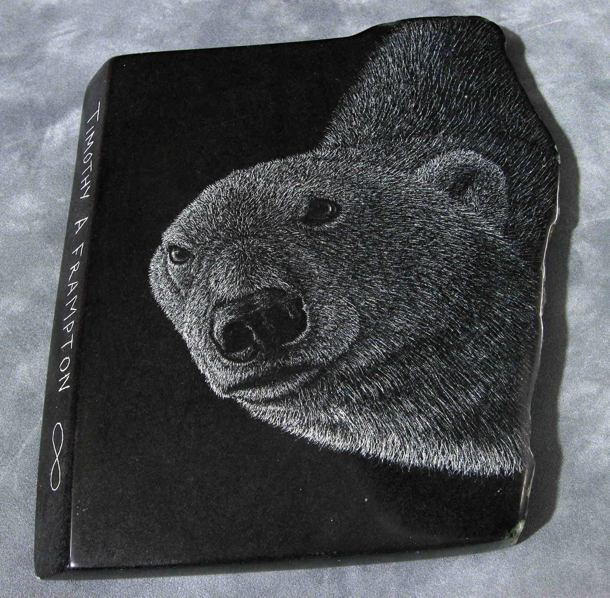 Polar Bear #3 Tim Frampton