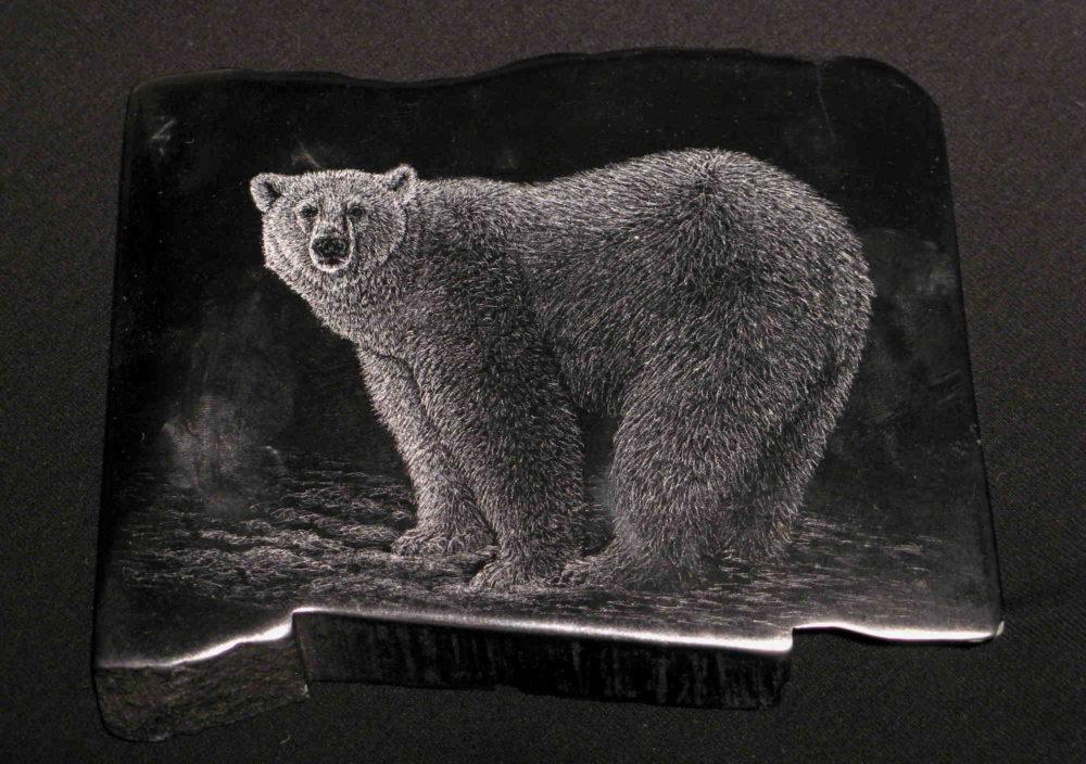 Polar Bear #5 Tim Frampton (1)