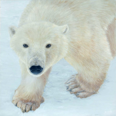 Polar Expression Terry Isaac