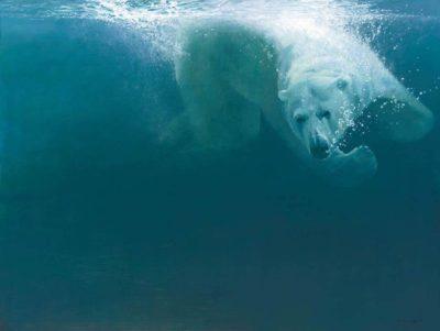 Polar Impact John Seerey Lester