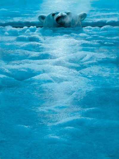 Polar Lookout John Seerey Lester