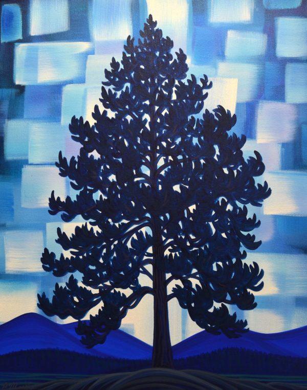 Ponderosa Pine - Patrick Markle