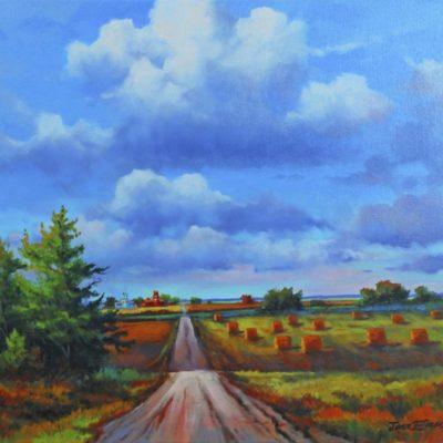 Prairie Daze - Jonn Einerssen