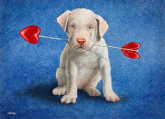 Puppy Lover Will Bullas