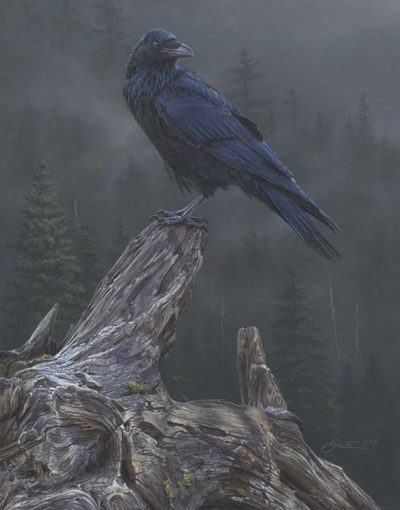 Raven's Roost - Daniel Smith