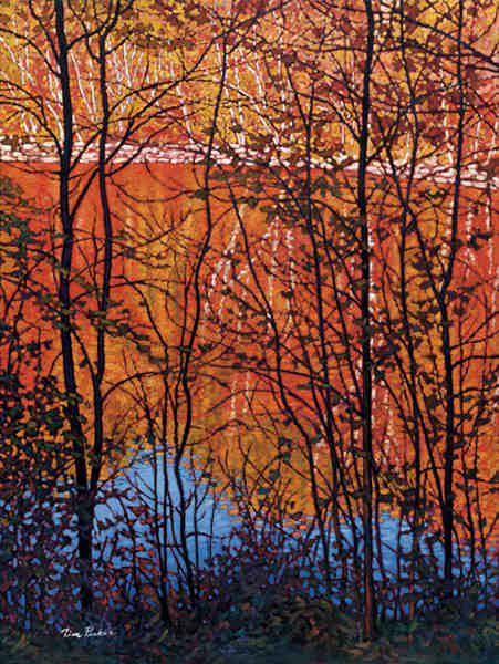 Reflections Of Autumn Tim Packer
