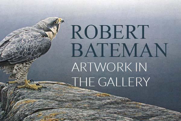Robert Bateman - 2019f - Tile