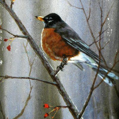 Robin's Perch - Maurade Baynton