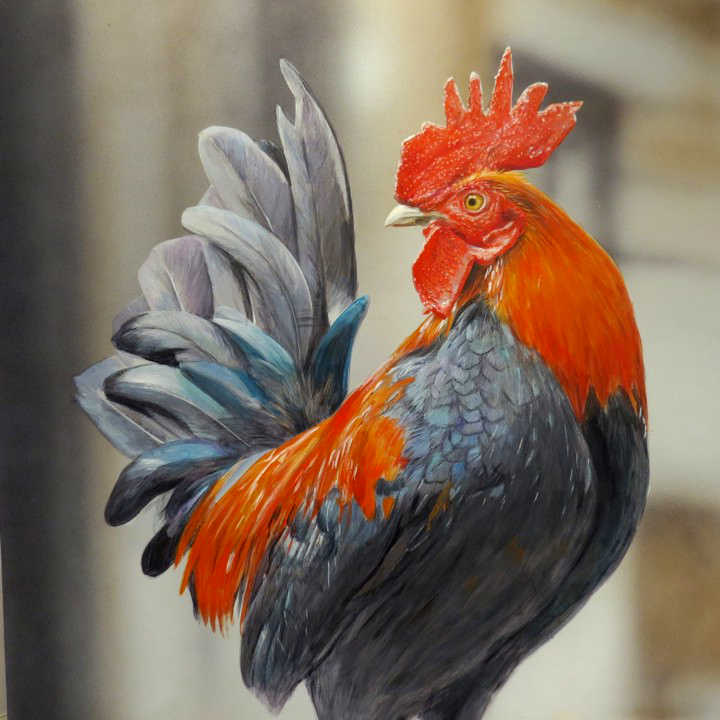 Rooster Terry Isaac