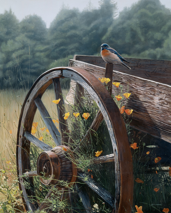 Rust And Blue Terry Isaac