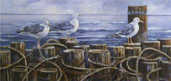 Seagulls Welcome Joan Healey