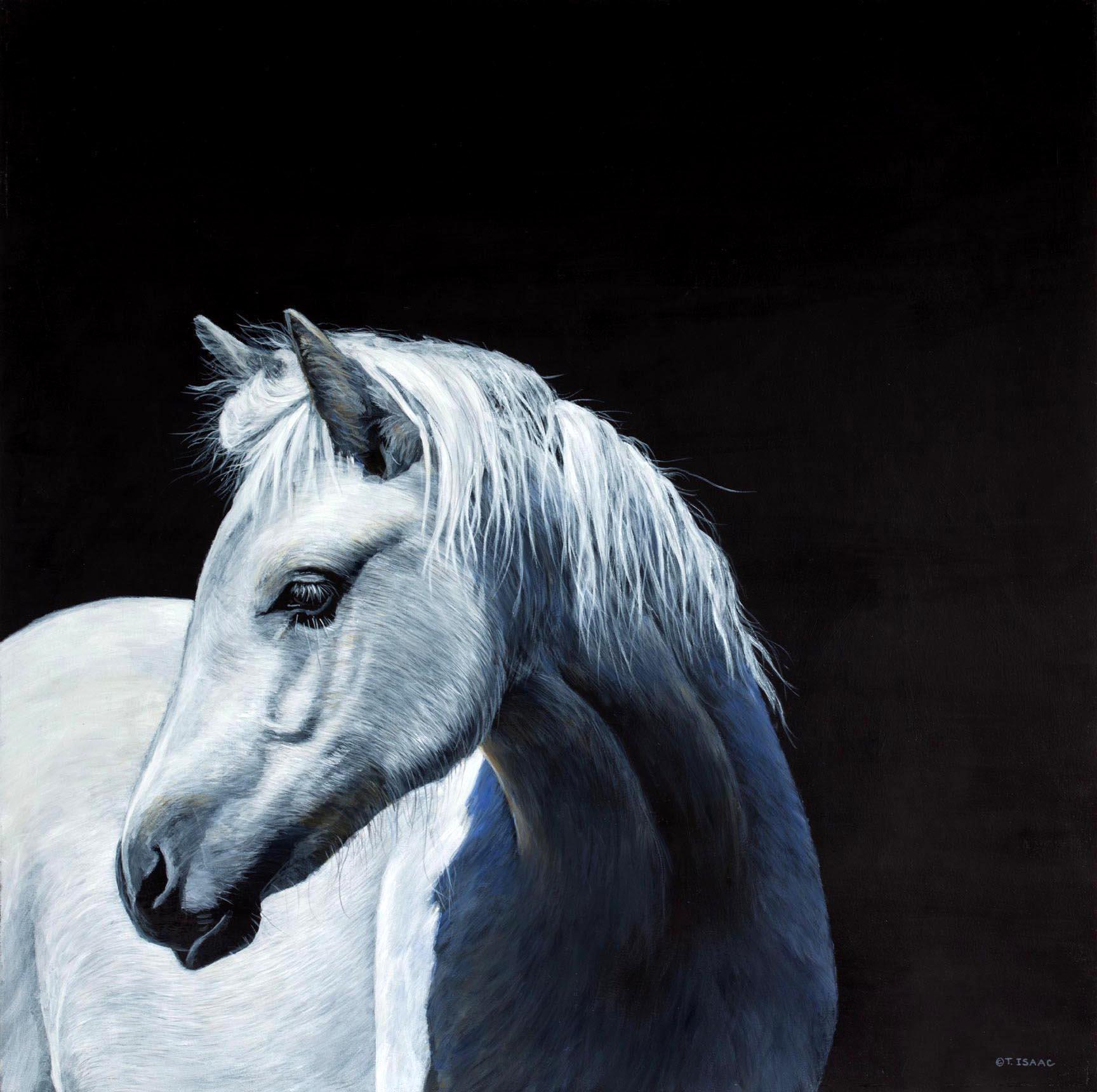 Serenity - Terry Isaac