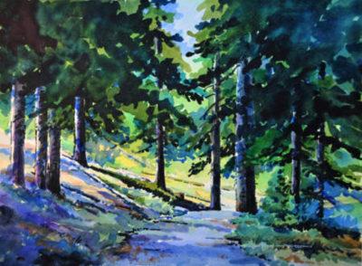 Shadows On Lake Edith Path Gregg Johnson