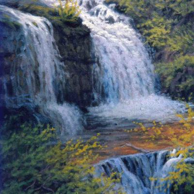 Shirley Canyon Falls Charles White