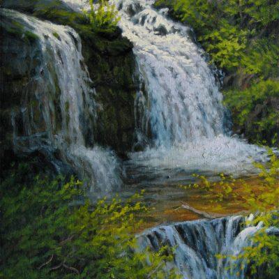Shirley Falls - Charles White