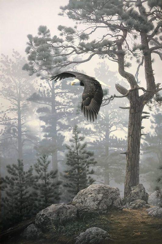 Shrouded Forest - Daniel Smith