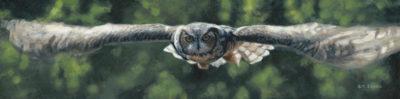 Silent Flight Terry Isaac