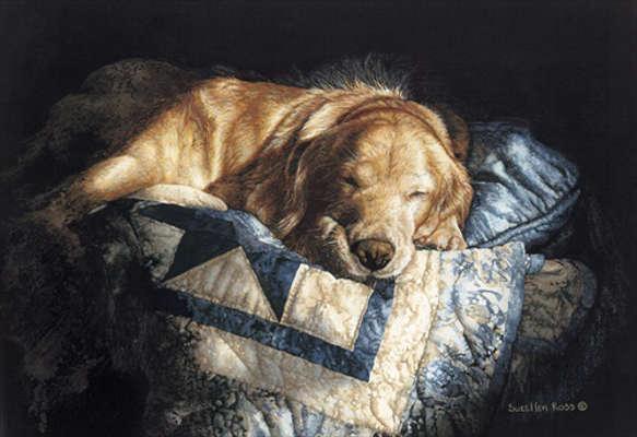 Snooze Sueellen Ross