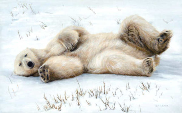 Snow Angel Terry Isaac
