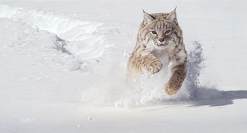 Snow Blower Daniel Smith