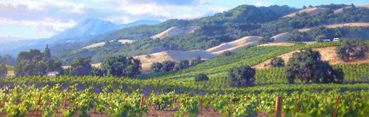 Song Of The Wine Country June Carey