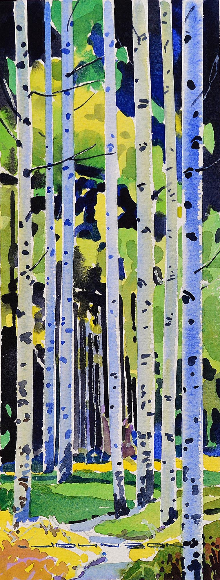 Spring Aspens - Gregg Johnson