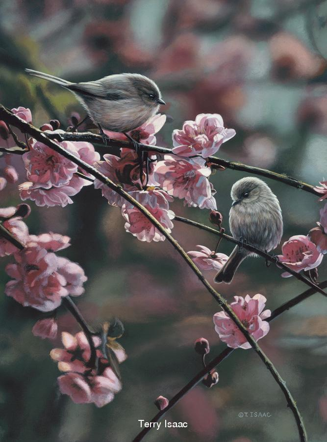 Spring Song Terry Isaac