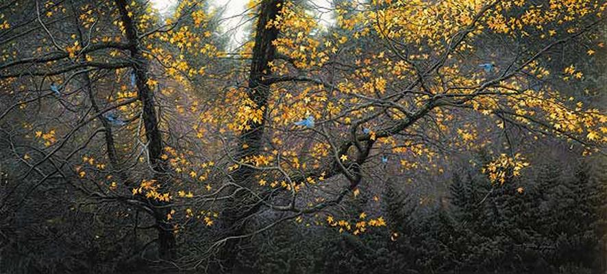 Stellar Autumn Stephen Lyman