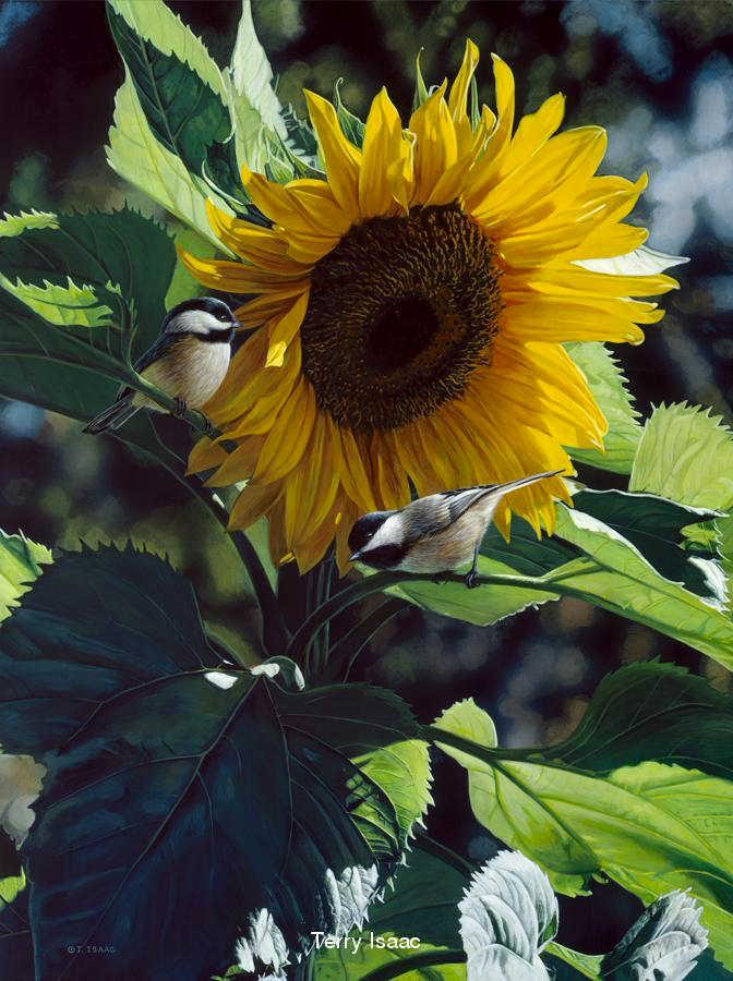 Sunbathers Terry Isaac