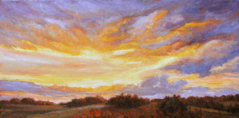 Sunfire Audrey Pfannmuller