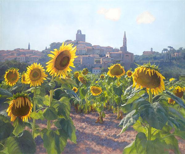 Sunflowers Of Castiglion Fiorentino June Carey