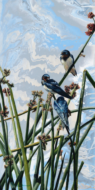 Swallow Dream - Cindy Sorley-Keichinger