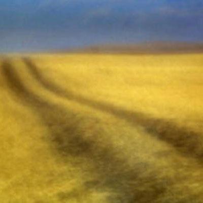 Sweet Fields, Study #13 Frank Grisdale