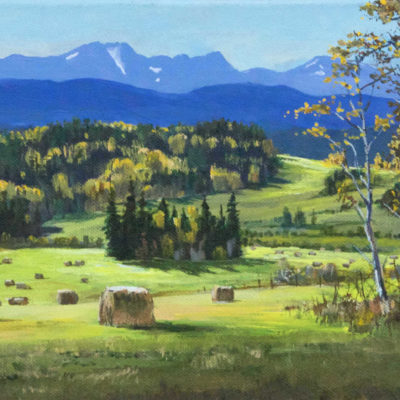 Telkwa Range From Woodmere Road Mark Hobson