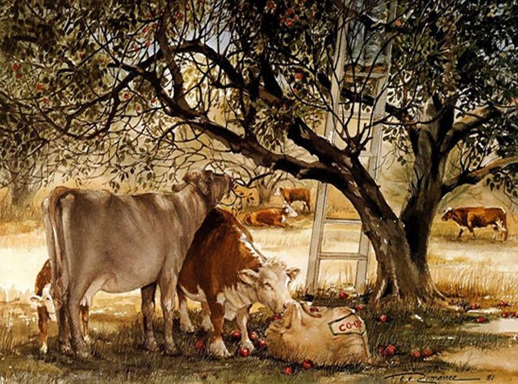 The Apple Pickers Trisha Romance