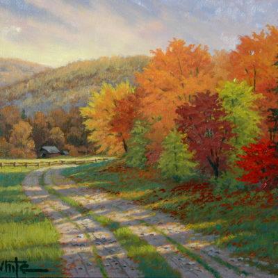 The Woodlot Road - Charles White