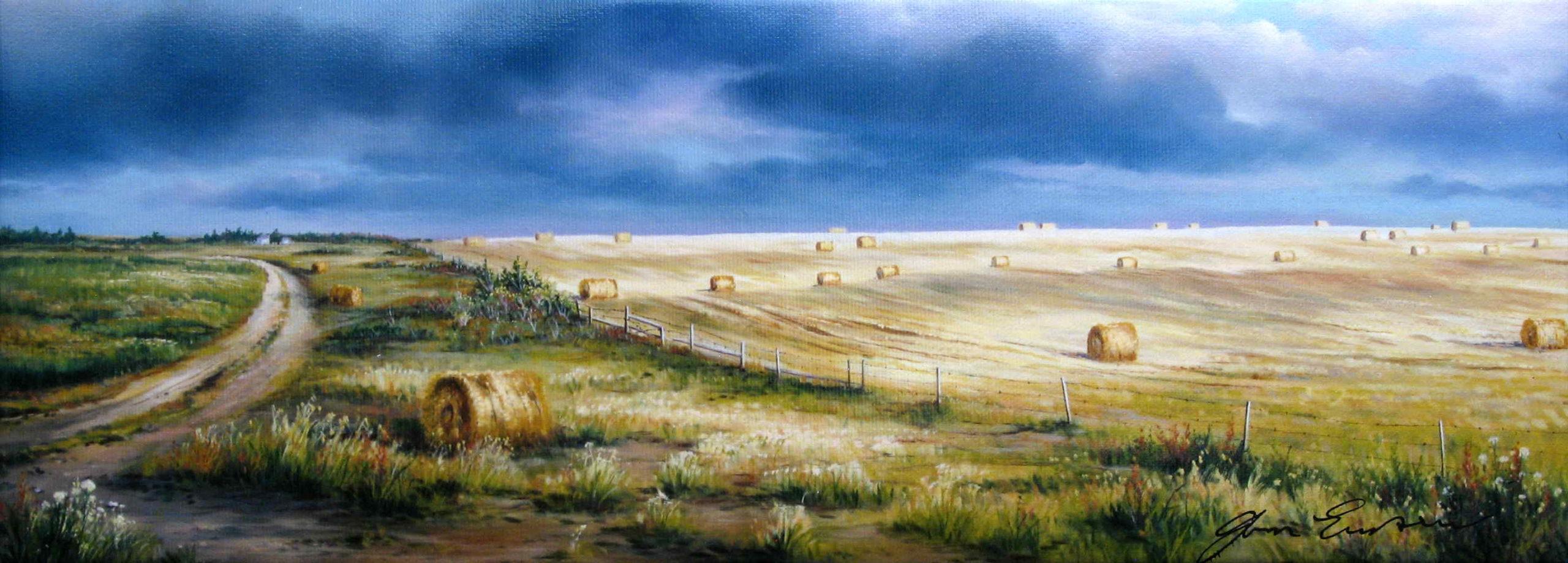 Through The Mowing Fields Jonn Einerssen