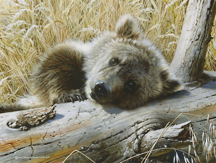 Time Out Grizzly Cub Carl Brenders