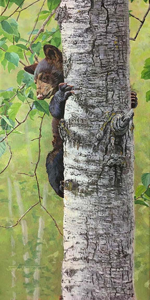 Tree Hugger - Jan Martin McGuire