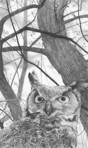 Treetop Security - Ryan Jacque