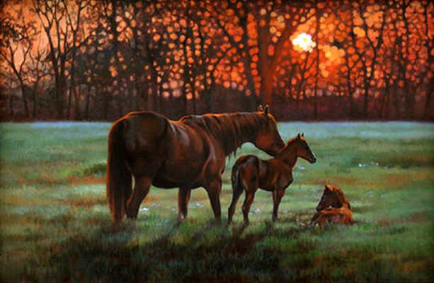 Twilight Serenity Maurade Baynton