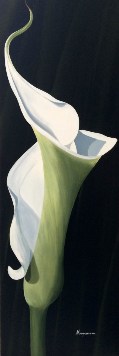 Twisted White Calla Dennis Magnusson