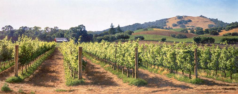 Vineyard Before The Harvest June Carey