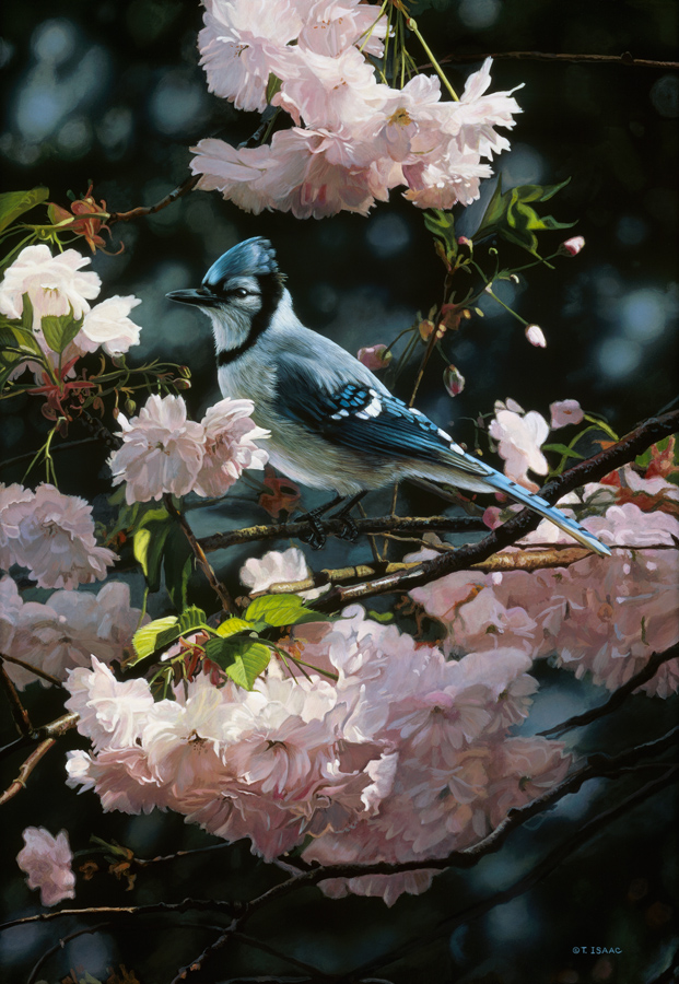 Visitor In Blue Terry Isaac