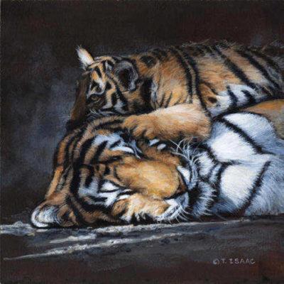 Warm Pillow Terry Isaac