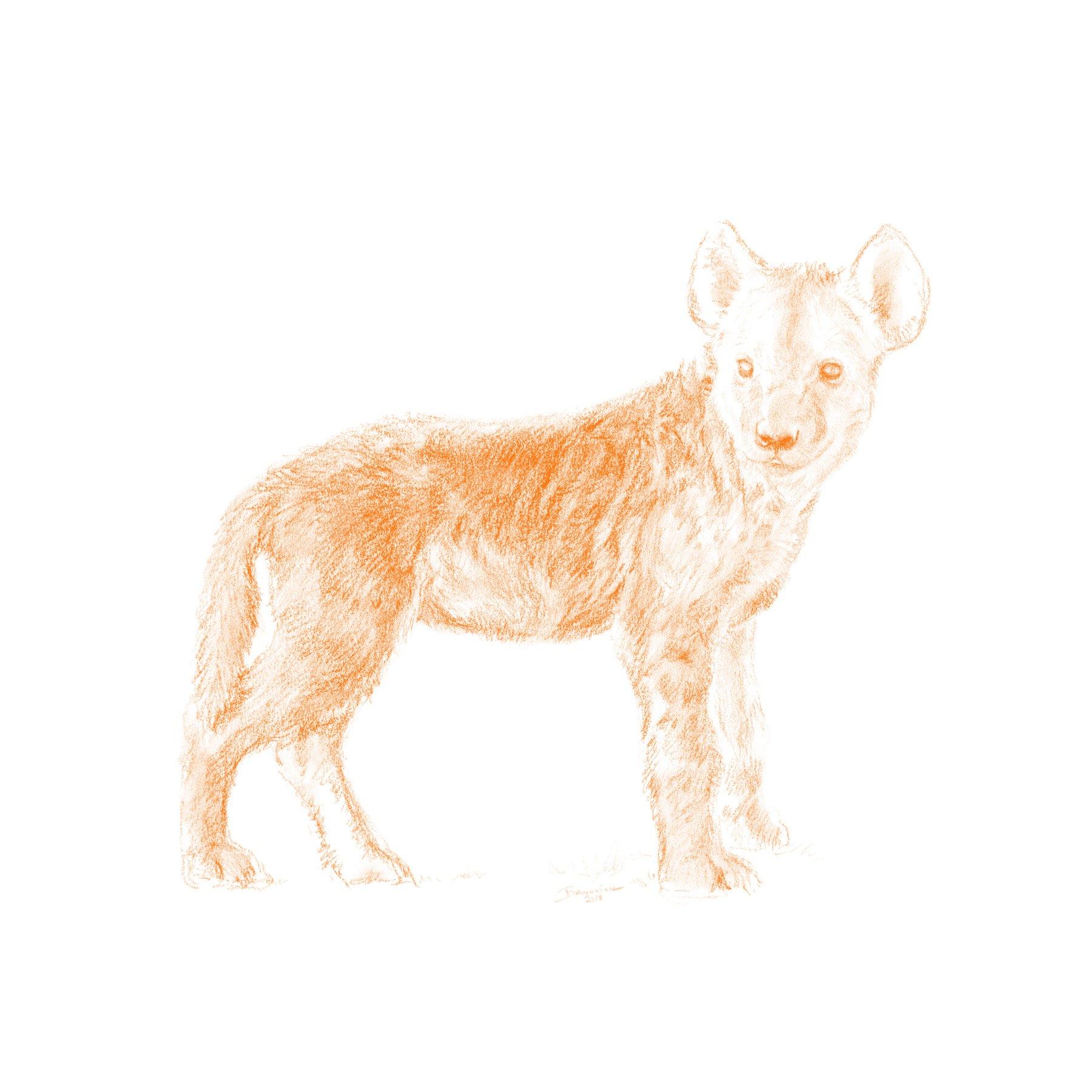 Wild Child - Hyena - John Banovich