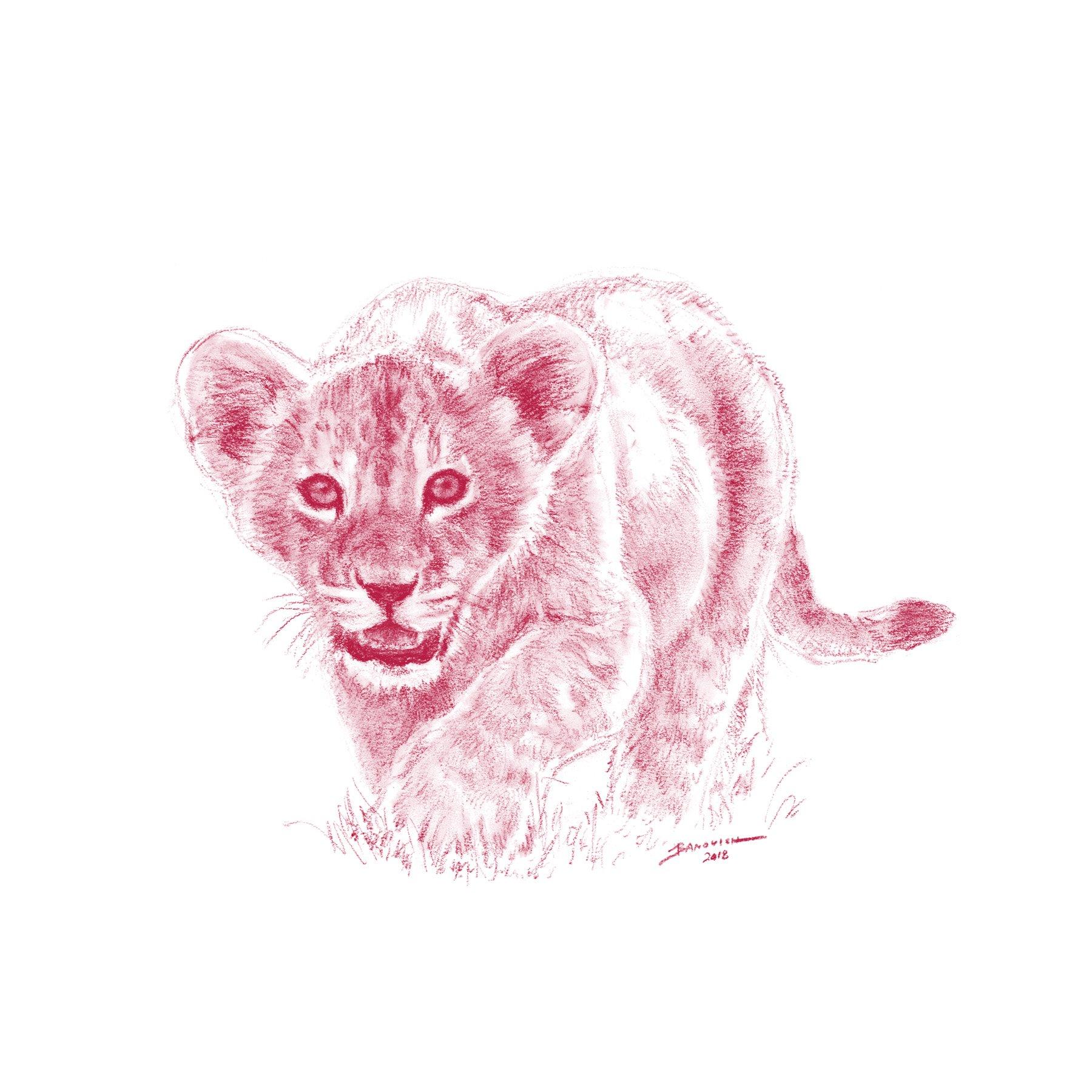 Wild Child - Lion - John Banovich