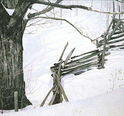Window Into Ontario - Robert Bateman