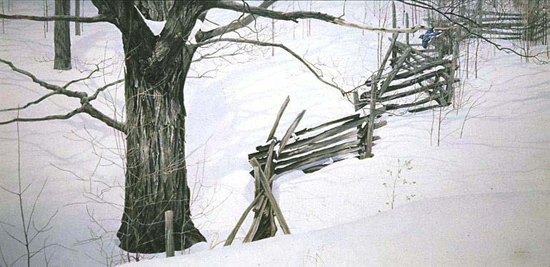 Window Into Ontario - Robert Bateman