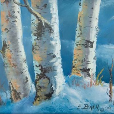 Winter Birch - Elsie Baer